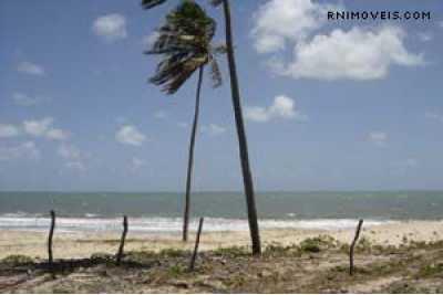 Terreno beira-mar em Muriú