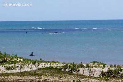 Terreno beira-mar em São Miguel do Gostoso
