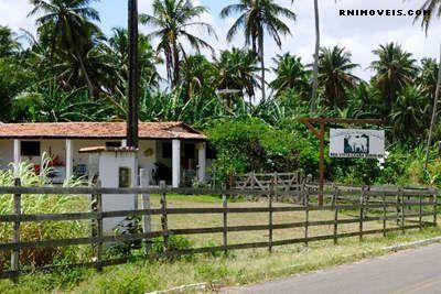 Fazenda no Vale de Ceará-Mirim