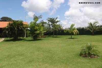 Jardim gramado e arborizado