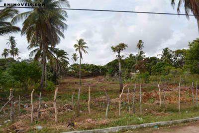 Terreno na praia de Pititinga 3870 m2